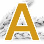 A-Qualitäts – Weizen